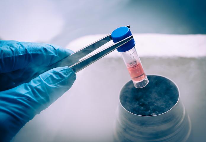 стволовые клетки урология андрология
