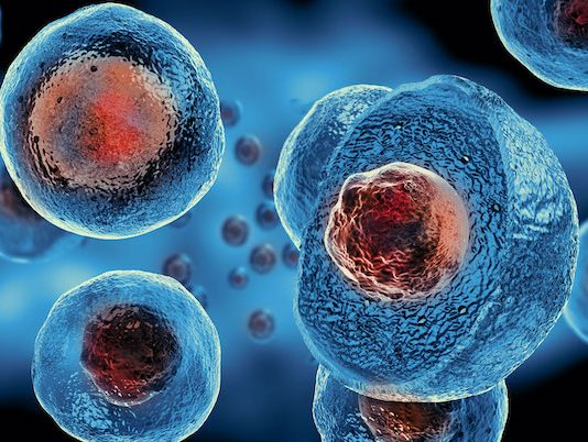 Use of Stem Cells in Urology and Andrology