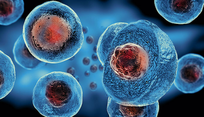 лечение стволовыми клетками